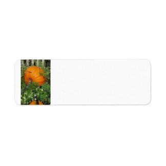 Étiquette de adresse de jardin de citrouille