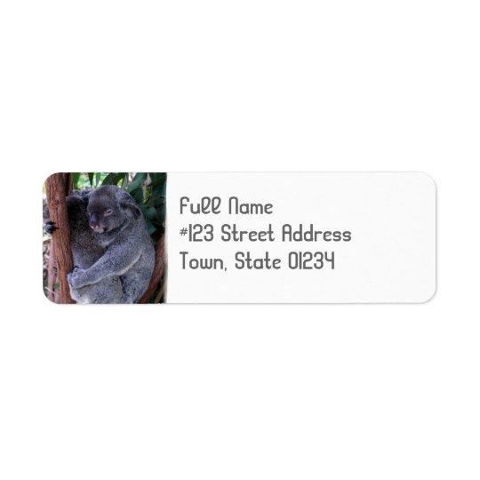 Étiquette de adresse de retour de caresse d'ours