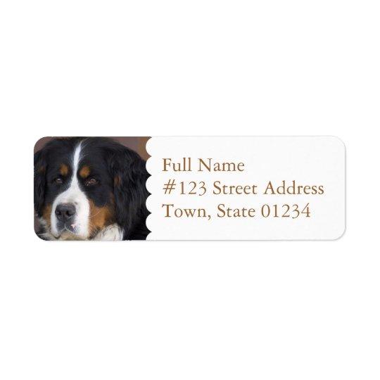 Étiquette de adresse de retour de chien de