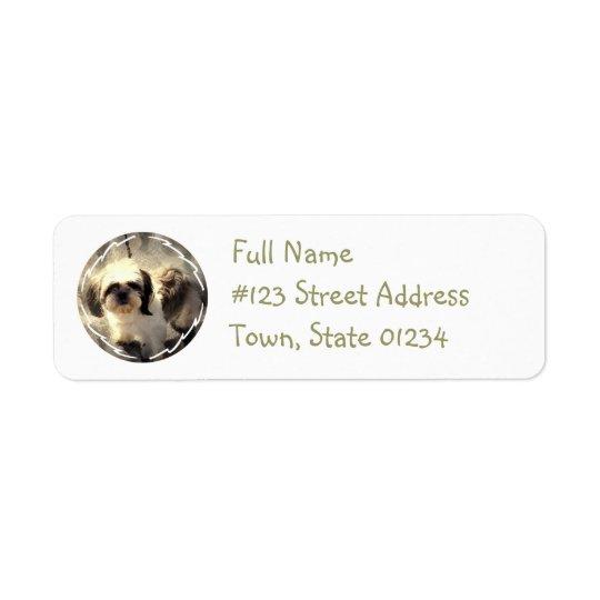 Étiquette de adresse de retour de chien de Tsu de
