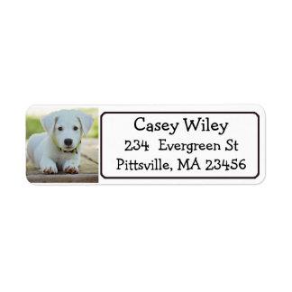 Étiquette de adresse personnalisé d'animal
