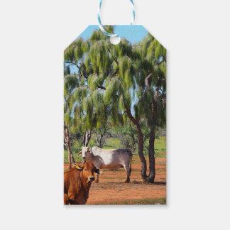 Étiquette de cadeau d'arbres de Waddi