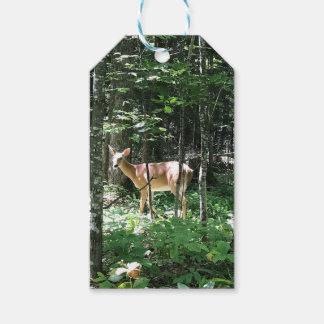 Étiquette de cadeau de cerfs communs