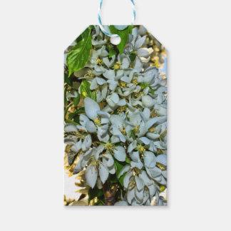 Étiquette de cadeau de fleur