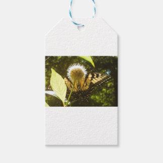Étiquette de cadeau de fleur de monarque de juin