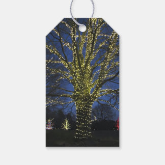 Étiquette de cadeau de lumières de Noël