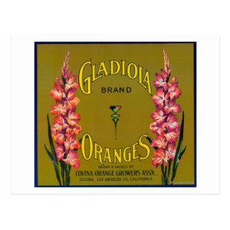 Étiquette de caisse d'agrume de marque de Gladiola Carte Postale