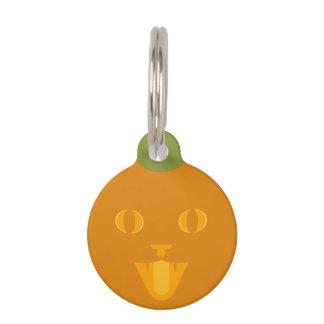 Étiquette de chat du feu follet médaillon pour animaux