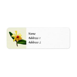 Étiquette Économies jaunes d'orchidée inclinées par rose la