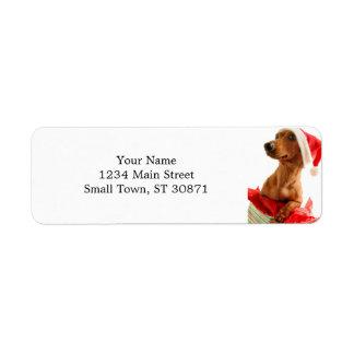 Étiquette Le teckel père Noël - le chien de père Noël -