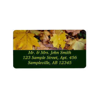 Étiquette L'érable tombé laisse la nature jaune d'automne