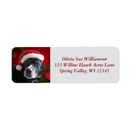 Étiquette Mélange de Père Noël Dog-Lab/Rott avec Pointsettia