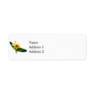Étiquette Orchidée jaune inclinée par rose