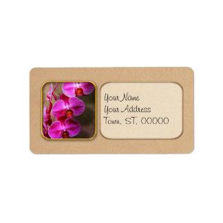 Étiquette Orchidée - Phalaenopsis - l'orchidée de mite