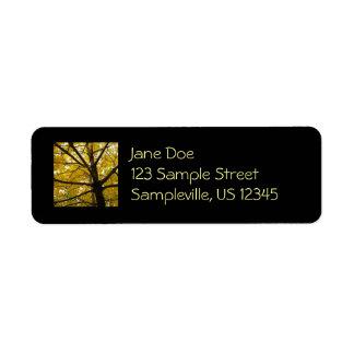 Étiquette Paires de nature jaune d'automne d'arbres d'érable