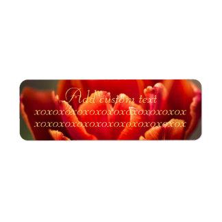 Étiquette Photo assez rouge de pétales de tulipe. Ajoutez le
