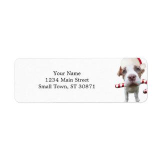 Étiquette Pitbull de Noël - pitbull de père Noël - chien de