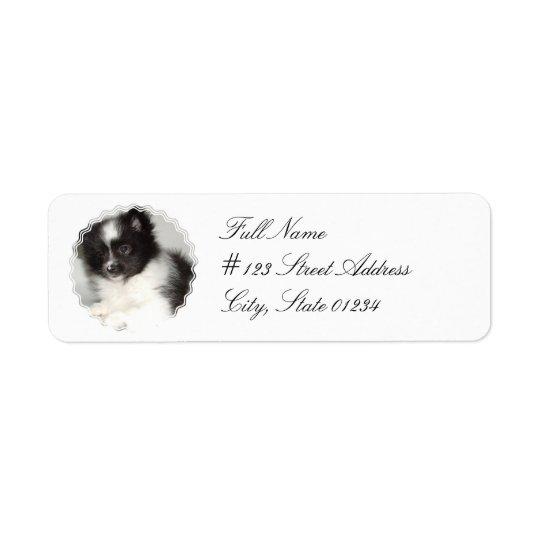 Étiquette postale de chien de Pomeranian de jouet