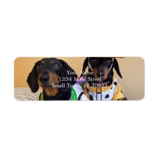 Étiquette Teckel drôle - cowboy de chien