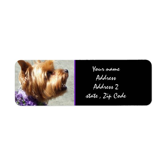 Étiquette Terrier de Yorkshire