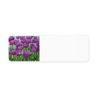 Étiquette tulipes pourpres pour toujours