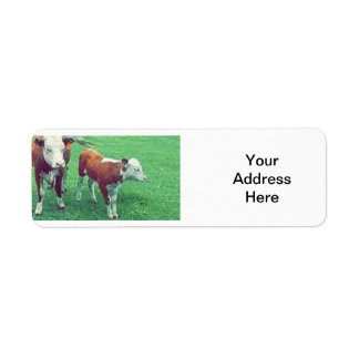 Étiquette Vache
