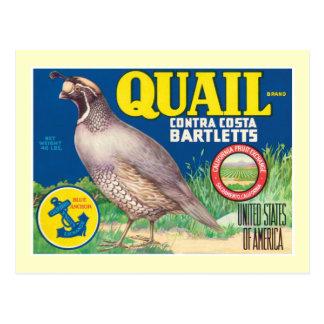 Étiquette vintage de produit alimentaire cartes postales