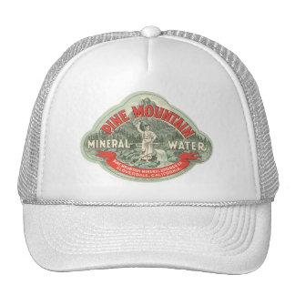 Étiquette vintage de produit, l'eau minérale de casquette