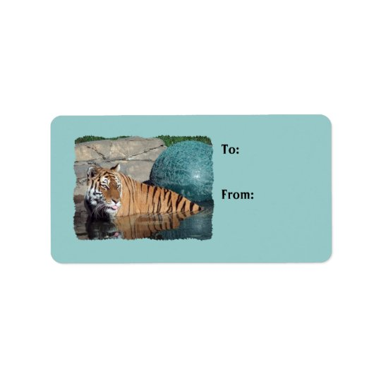 Étiquettes bleu-clair de cadeau de photo de tigre