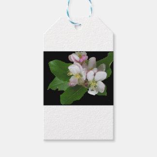 Étiquettes-cadeau Apple fleurissent la fleur