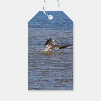 Étiquettes-cadeau Atterrissage de pélican