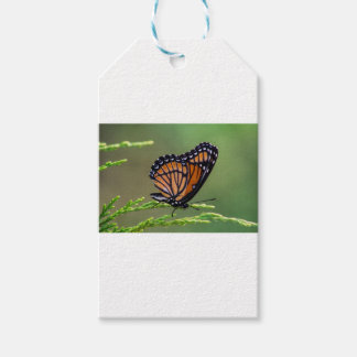 Étiquettes-cadeau Beauté de papillon de monarque