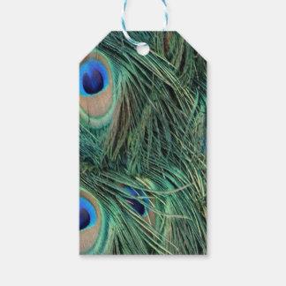 Étiquettes-cadeau Belles plumes de paon
