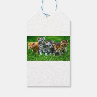 Étiquettes-cadeau Cadeaux mignons de Kitty
