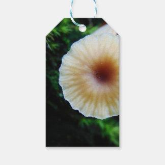 Étiquettes-cadeau Champignon minuscule