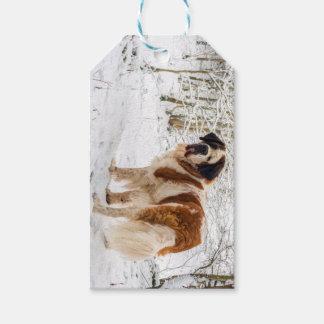 Étiquettes-cadeau Chien de St Bernard dans la neige