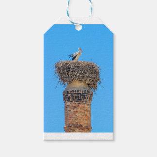 Étiquettes-cadeau Cigogne adulte dans le nid sur chimney.JPG