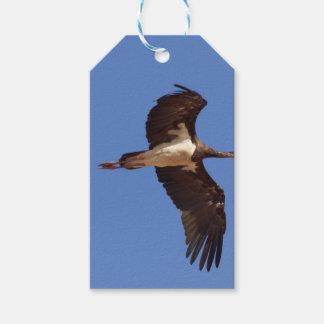Étiquettes-cadeau Cigogne noire (nigra de Ciconia) en vol