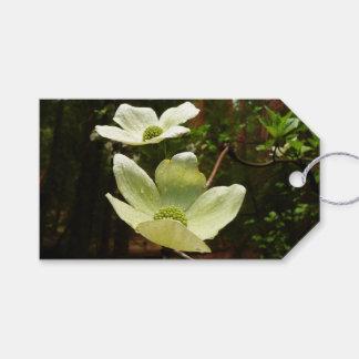 Étiquettes-cadeau Cornouillers et séquoias en parc national de