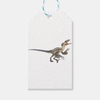 Étiquettes-cadeau Deinonychus dans le profil latéral