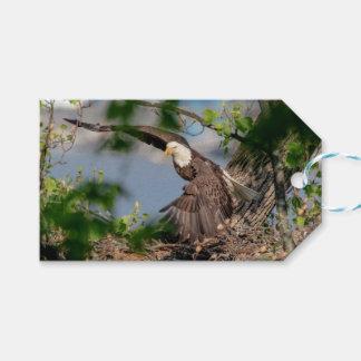 Étiquettes-cadeau Eagle chauve partant du nid