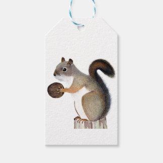 Étiquettes-cadeau Écureuil de boomer