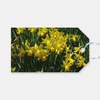 Étiquettes-cadeau Fleurs gaies de ressort des jonquilles I jaune