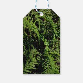 Étiquettes-cadeau Fougères vertes