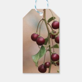 Étiquettes-cadeau Fruits d'un nerprun brillant de feuille