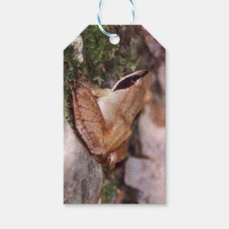 Étiquettes-cadeau Grenouille en bois