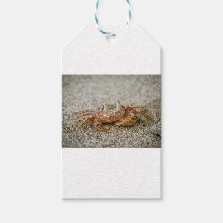 Étiquettes-cadeau Griffes de crabe