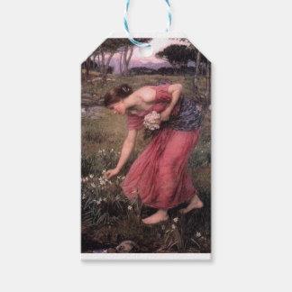 Étiquettes-cadeau John William Waterhouse - narcisse - beaux-arts