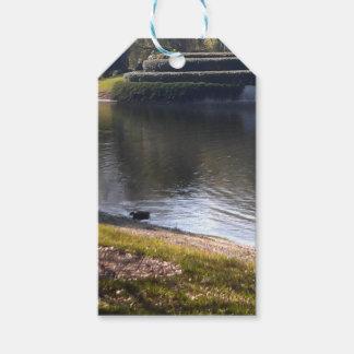 Étiquettes-cadeau Lac et pierre