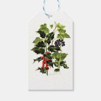 Étiquettes-cadeau Noël de conception de houx et de lierre